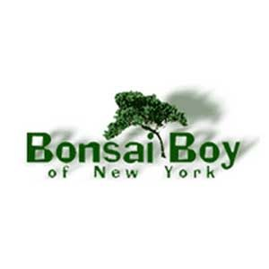 bonsai-boy-of-new-york